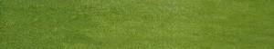 home_golf_grass_loop